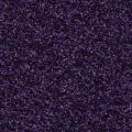 Coral Brush 5709 royal purple