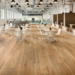 Korlok RKP8111 Baltic Limed Oak